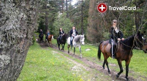 Конна езда за начинаещи снимка 7