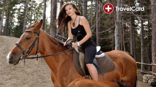 Конна езда за начинаещи снимка 8
