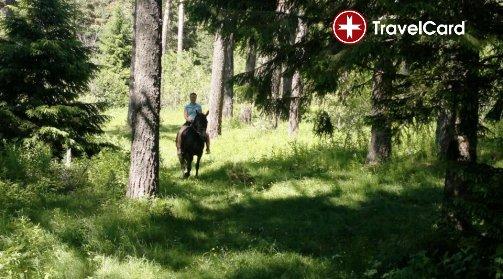 Конна езда за начинаещи снимка 5