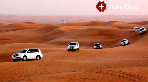 Сафари в Дубай снимка 3